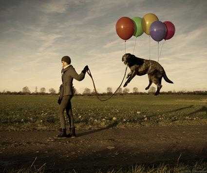 הכלב המרחף של אריק יוהנסון