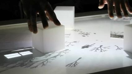 אוגמנטציה של קוביות שולחן ב-Augmented Shadow