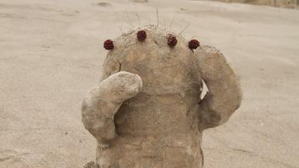 חול בסרטון האנימציה בקבוק של קירסטן לפור